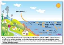 gráfico de la acción del CO2 por la industría