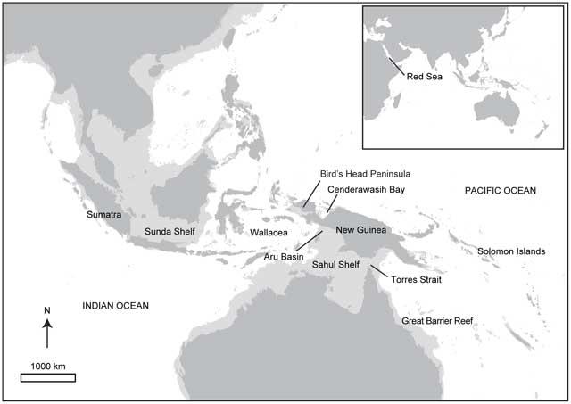 almeja gigante, mapa de localización