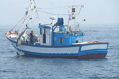 Atún pesca tradicional
