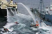 Activistas de Grenpeace tratan de impedir el repostaje de la flota japonesa