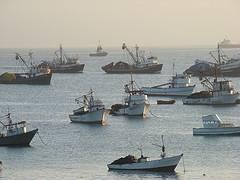 barcos pesqueros