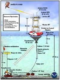 sistema de boyas detección de tsunamis