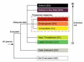 Categorias lista roja de la UICN