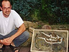 Foto del fósil del escorpion y Poschmann