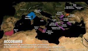 Areas marinas protegidas propuestas en el Mediterráneo