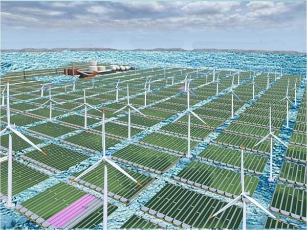 combinación de parque eólico y cultivo de microalgas