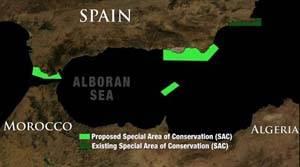 areas marinas protegidas pedidas en el Mar de Alborán