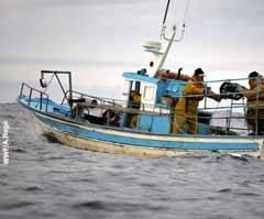 Pesquero artesanal