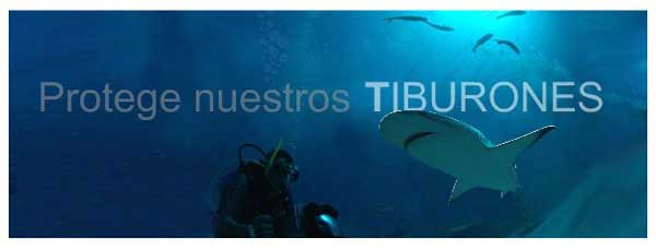 protege nuestros tiburones