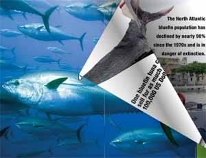 páginas sobre atún Greenpeace