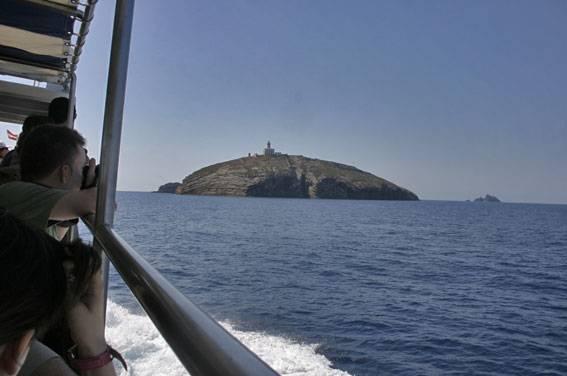 avistaje certáceos en las islas columbretes