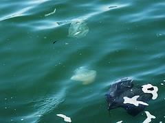 plástico en el Mar Mediterráneo