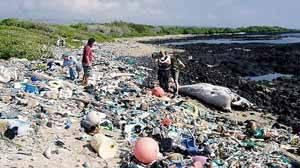 basura en una playa de japón