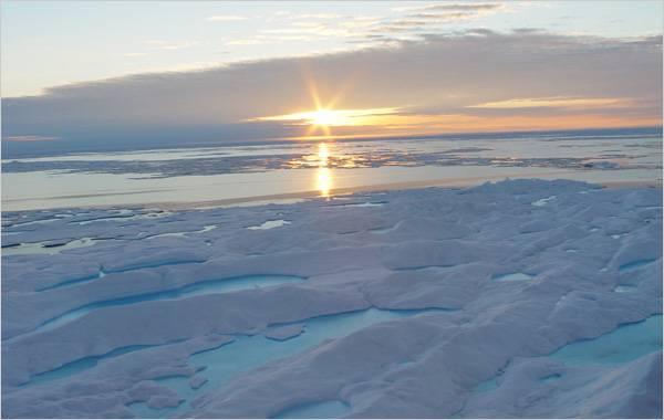 calentamiento del ártico