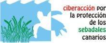 ciberactua por los sebadales