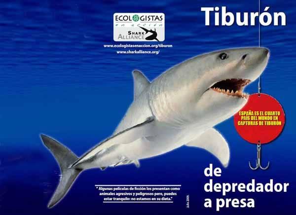 cartel tiburón de depredador a presa