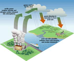 ciclo CO2, lluvia ácida