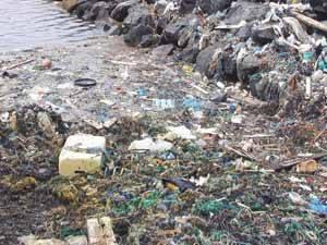 desechos de redes en las islas Shetland