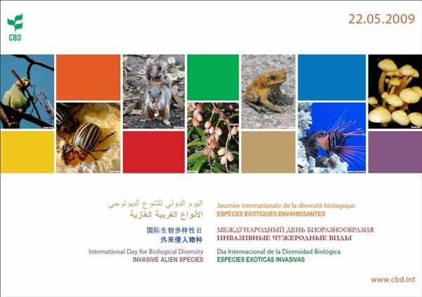 Día Internacional Biodiversidad 2009, cartel