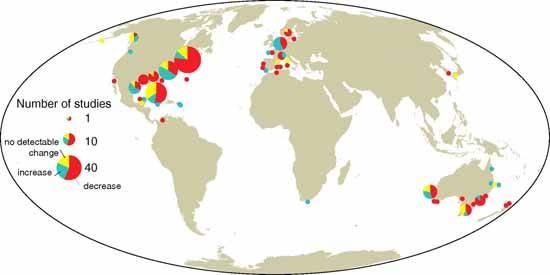 estudios de praderas submarinas en el mundo