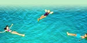 turistas flotando en las aguas del mar muerto