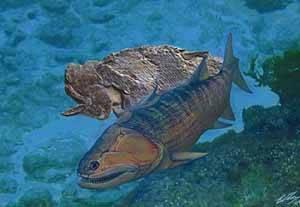 fósil del Guiyu oneiros, comparación artística