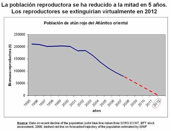 gráfico disminución población del atún rojo
