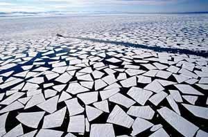 hielo del océano ártico