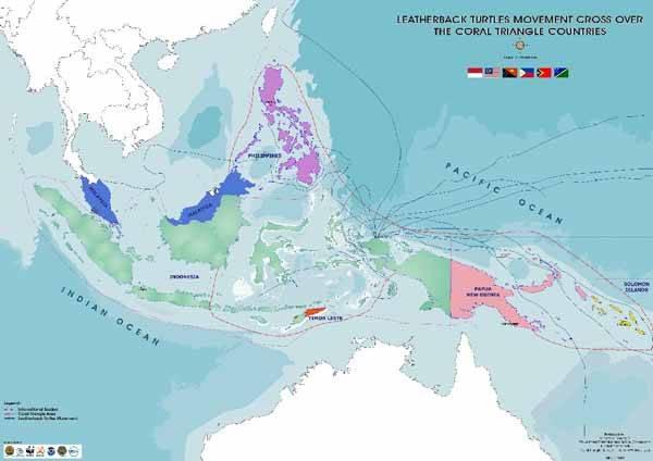 mapa tortugas marinas