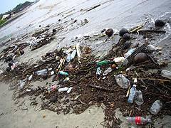 basuras en la playa