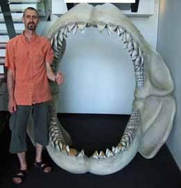megalodon, reconstrucción de su mandibula
