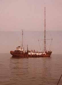 barco MV mi amigo