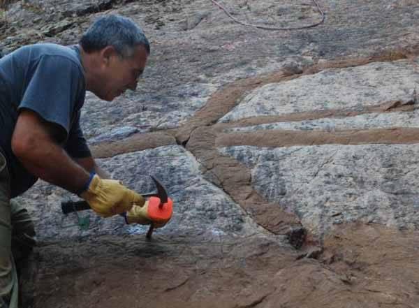 Un paleontólogo recogiendo muestras en Cabañeros
