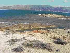 Pavlopetri ciudad sumergida en el mar, detalle de la costa