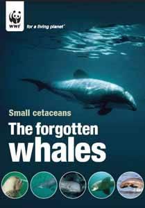 pequeños cetáceos, portada (wwf)