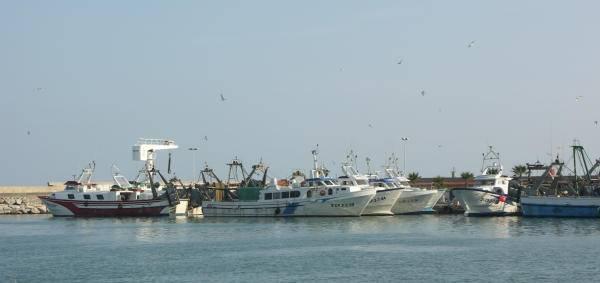 Pesqueros en Benicarló