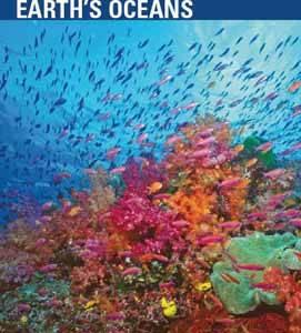 pnuma acidificación océanos