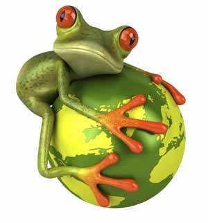 biomímesis, la rana en un mundo verde