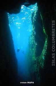 reservas marinas, islas columbretes