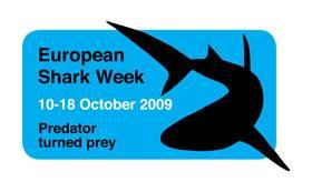 semana europea de tiburón