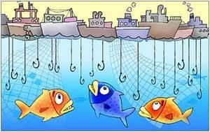 sobrepesca, dibujo
