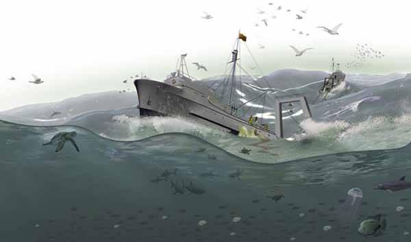 sobrepesca mar revuelto
