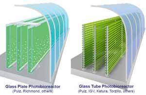 tecnología para producción de microalgas