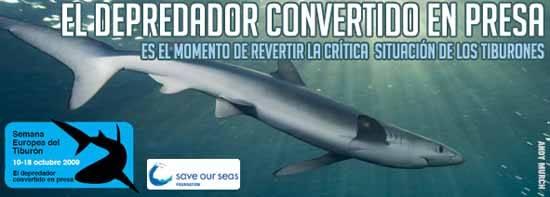 tiburón de depredador a presa