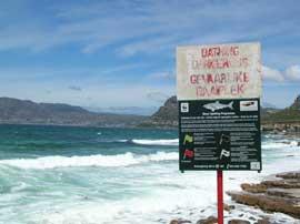 aviso de peligro de tiburones en una playa