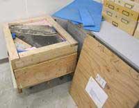 cajas con los fósiles del talatosaurio