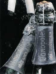 Heidsieck & Co Monopole Gout Americain, 1907