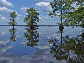lago Drummond, Virginia EE.UU.