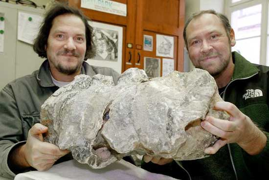 Liopleurodon ferox sostenidos por Eberhard Ffrey y Wolfgang Stinnesbeck
