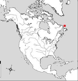 localización en el mapa del iceberg PII-A